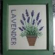 Lavender~ラベンダー