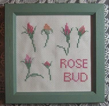 Rose Bud~バラのつぼみ