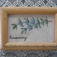 Rosemary~ローズマリー