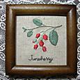 Juneberry~ジューンベリー