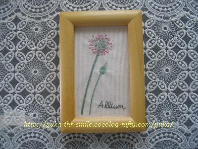 Allium~アリアム