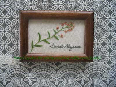 Sweet Alyssum~スウィート アリッサム