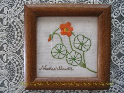 Nasturtium~ナスタチューム