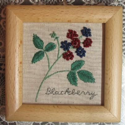 Blackberry~ブラックベリー