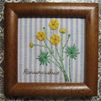 Ranunculus~ラナンキュラス