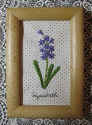 Hyacinth~ヒヤシンス