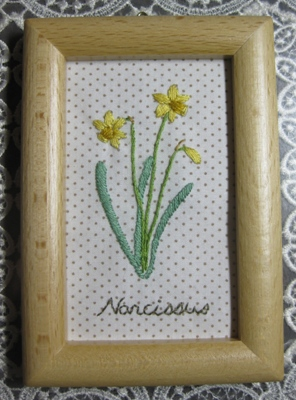 Narcissus~スイセン