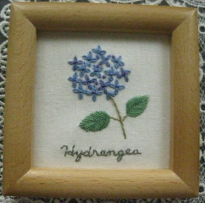 Hydrangea~アジサイ