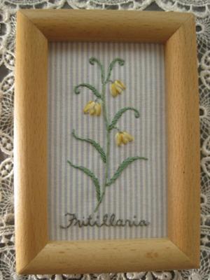 Fritillaria~フィリチラリア