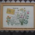 Herbal Life~春の種まき